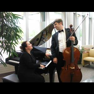 Mammoth Spring Cellist | Fine Arts Ensemble