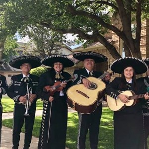 Best Latin Bands in Lubbock, TX