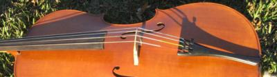 Coastal Chamber Musicians | Charleston, SC | Classical Trio | Photo #8