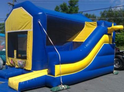 Appalachian Party Rentals Carolina Event Services | Boone, NC | Party Inflatables | Photo #15