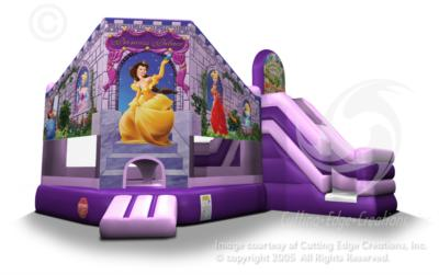 A & S Play Zone | Springboro, OH | Party Inflatables | Photo #4