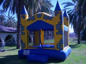 A Child's Joy ~ Quality Children's Entertainment | Phoenix, AZ | Party Inflatables | Photo #1