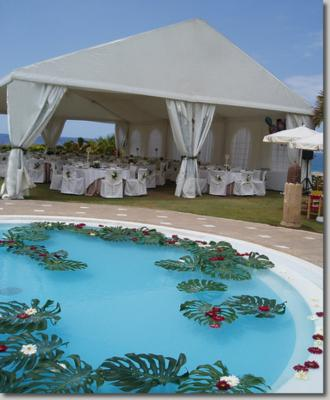 Grimes Events & Party Tents | Delray Beach, FL | Wedding Tent Rentals | Photo #1