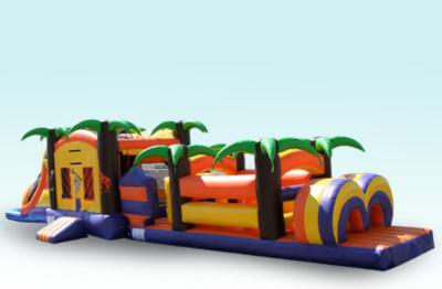 Do the Happy Bounce | North Port, FL | Party Inflatables | Photo #4