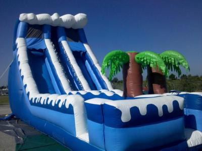 Do the Happy Bounce | North Port, FL | Party Inflatables | Photo #10
