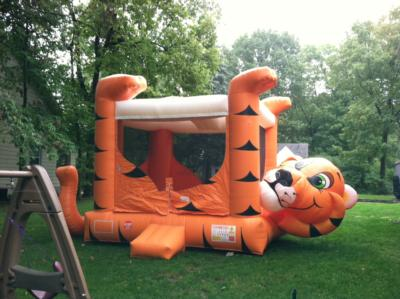 Busy Bouncing, LLC | Englewood, OH | Party Inflatables | Photo #12