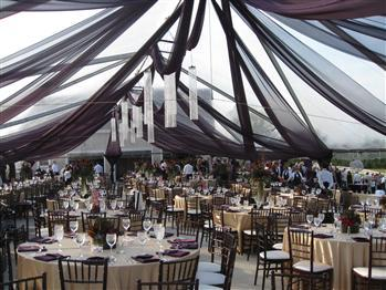 Vini's Party Rentals | Gardena, CA | Wedding Tent Rentals | Photo #4