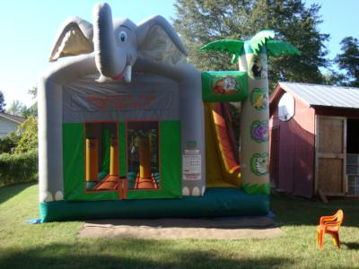 Inflate A Fun | Toccoa, GA | Party Inflatables | Photo #3
