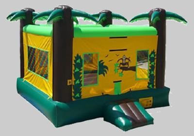inflate Some Fun llc | Harrison, MI | Party Inflatables | Photo #3