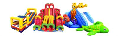 H & h Enterprises | Saint Albans, WV | Party Inflatables | Photo #1