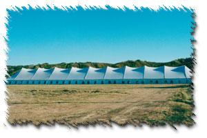 A-1 Rent-Alls  | Regina, SK | Wedding Tent Rentals | Photo #3