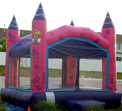 Big Fun Inflatables, LLC | O Fallon, MO | Party Inflatables | Photo #3