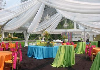 Midway Party Rental, Inc. | Saint Paul, MN | Wedding Tent Rentals | Photo #2