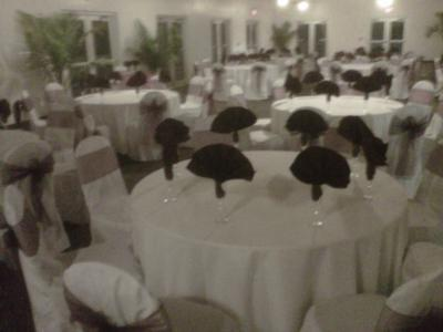 All In Fun Inc. Party & Event Rentals | Port Saint Lucie, FL | Wedding Tent Rentals | Photo #10