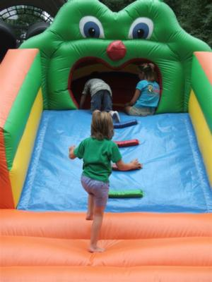 Blue Baboons Funtime Events, Inc. | Concord, NC | Party Inflatables | Photo #3