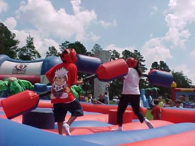Blue Baboons Funtime Events, Inc. | Concord, NC | Party Inflatables | Photo #7
