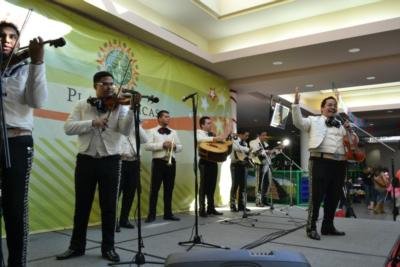 Mariachi Origen Y Tradicion | Houston, TX | Mariachi Band | Photo #17
