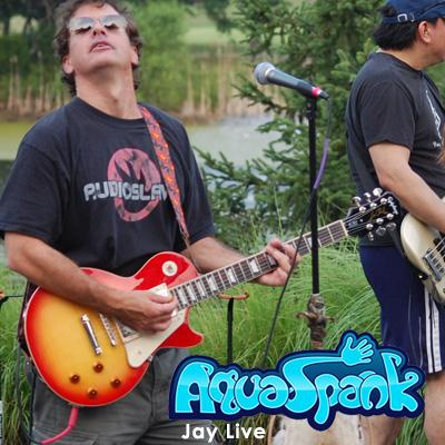 AquaSpank | Falls Church, VA | Cover Band | Photo #10