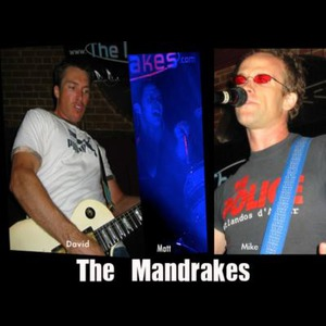 The Mandrakes - Cover Band - Huntington Beach, CA