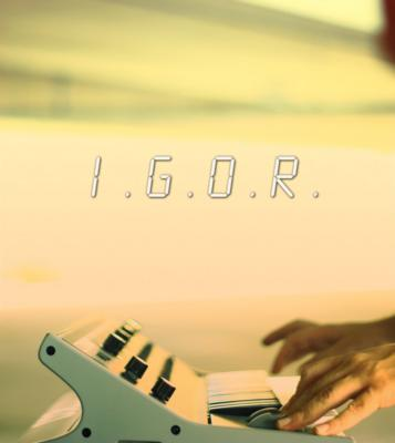 I.G.O.R. Visual Experience  | Sarasota, FL | Indie Rock Band | Photo #1