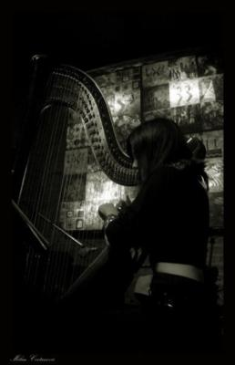 Anya Harp | Los Angeles, CA | Harp | Photo #14
