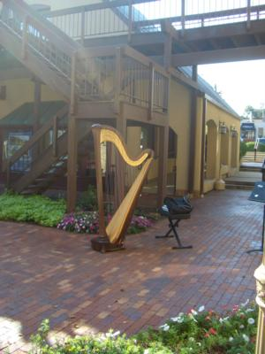 Alishia Joubert: Bellingham Harpist | Bellingham, WA | Harp | Photo #8