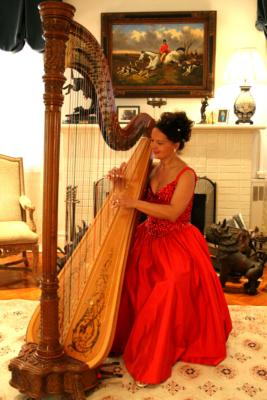 Sylvia Kowalczuk | Forest Hills, NY | Classical Harp | Photo #9