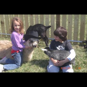Four Points Ranch & Petting Zoo - Petting Zoo - Augusta, KS