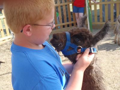 Four Points Ranch & Petting Zoo | Augusta, KS | Petting Zoo | Photo #13
