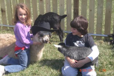 Four Points Ranch & Petting Zoo | Augusta, KS | Petting Zoo | Photo #1