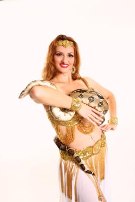 Gimme Shimmy~Belly Dance By Maria | Clermont, FL | Belly Dancer | Photo #14