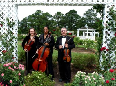 Arte Musicale String Ensemble | Newport News, VA | Classical String Quartet | Photo #1
