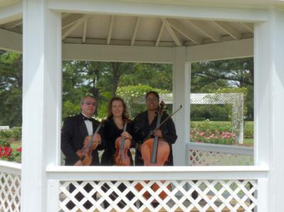 Arte Musicale String Ensemble | Newport News, VA | Classical String Quartet | Photo #3