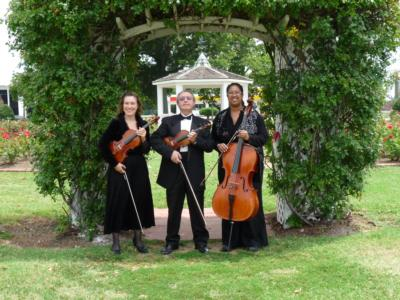 Arte Musicale String Ensemble | Newport News, VA | Classical String Quartet | Photo #4