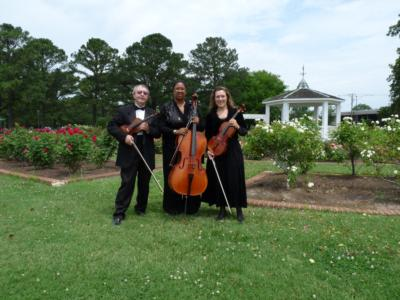 Arte Musicale String Ensemble | Newport News, VA | Classical String Quartet | Photo #2