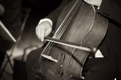 El Real Chamber Players | Placentia, CA | Classical String Quartet | Photo #8