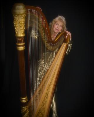 Elegance Of The Harp By Twyla | Tacoma, WA | Harp | Photo #5