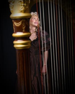 Elegance Of The Harp By Twyla | Tacoma, WA | Harp | Photo #9