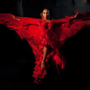 Passion Flamenco Music and Dance Ensemble - Flamenco Dancer - Santa Barbara, CA