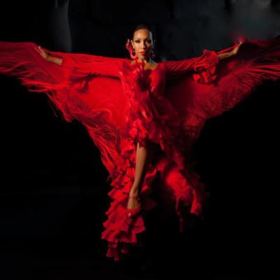 Passion Flamenco Music and Dance Ensemble | Santa Barbara, CA | Flamenco Dancer | Photo #1