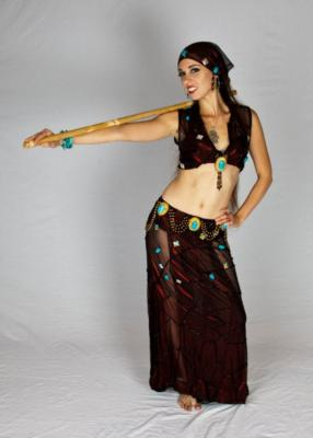 Rebecca Hartman Bellydance | Kansas City, MO | Belly Dancer | Photo #4