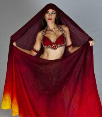 Rebecca Hartman Bellydance | Kansas City, MO | Belly Dancer | Photo #1