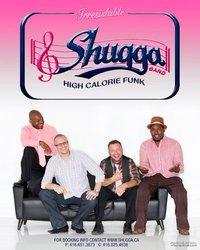 Shugga | Toronto, ON | Cover Band | Photo #1