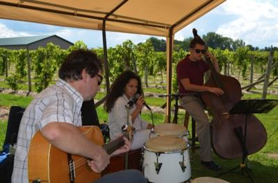 ACOUSTIC WEDDING - Jazz/Classical/Latin/Gypsy | Minneapolis, MN | Acoustic Band | Photo #17