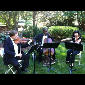 Hammond Classical Quartet | The New York String Ensemble