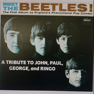 Chicago, IL Beatles Tribute Band | Meet The Beetles