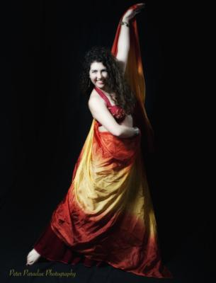 Ankara Rose - World Dance Artist | Merrimack, NH | Belly Dancer | Photo #17