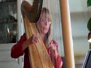 Ceclila Parker Chartoff, Professional Harpist | Sparta, NJ | Classical Harp | Clarinet Concerto in B Flat major- Key of C