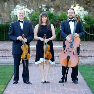 Citrus Heights Chamber Music Trio | Quartet / Trio Maxim