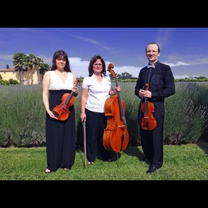 Williams Classical Quartet | Trio Maxim